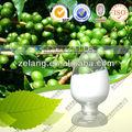 supplemento di perdita di peso puro caffè verde estratto