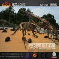 Jeder Größe, Art von realistisch dinosaurier-fossil