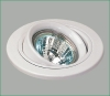 Gimbal Ring MR16 Spot Ceiling Light