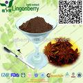 Anis étoilé extrait poudre/98% l'acide shikimique par hplc
