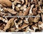 Dried Black Morels Maushrooms