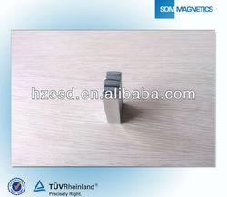 TS16949 Neodymium Magnet Motor