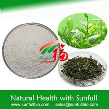 high purity green tea extract EGCG