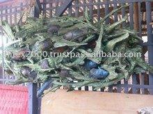 Handicraft: Teak root handicraft for wall decoration