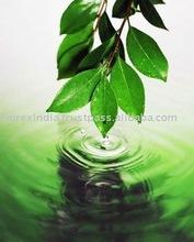 fresh, green grass odour cis-3-Hexenol Leaf Alcohol