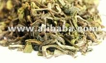 Darjeeling First Flush Rohini 2015 Black Tea - Directly from Darjeeling - 2015 Hot Product