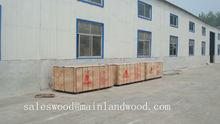 Megaplex poplar/hardwood core Red film faced plywood