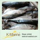 Sea foods large quantity whole tuna fish