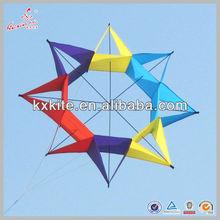 Weifang 120cm Wingspan Single Line 3D Flower Kite