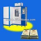 DCS-5F13 Automatic Vacuum Pillow Packing Machine