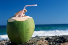 ORGANIC Aseptically-Packed Coconut Water