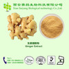 GMP Factory Supply Competitive Price Ginger Extract 5%~20%