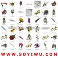 cactus planta de vaso atacadista de flores artificiais