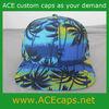 Blank OEM Customized Design Hawaii Print Snapback Hats Wholesale