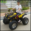 200cc Automatic ATV with Reverse ATV(SHATV-015D)