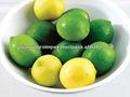 Limão importador em Dubai / malásia / singapura / Vietnam / tailândia / maldivas