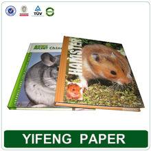 educational personalized custom wholesale eco friendly hardcover art bulk children book printing