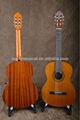 venta caliente de la guitarra clásica con acabado brillante
