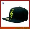 CNH002/ Cheap sport cap hat/ cheap custom snapback hat and cap