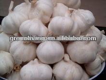 Chinese natural garlic / vegetables ,fruits seller/2014