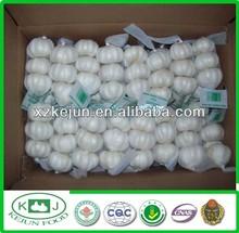 High Quality Chinese Garlic