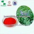 extracto de la planta de polvo del extracto de salvia para la reducción de la sangre de prensa