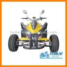 2014 TOP QUALITY NEW ATV for sale(TKA250E-Y)