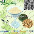 ( certificada gmp) proteína planta de reemplazo de la comida en polvo