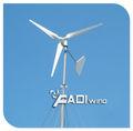 Alta qualidade 1000w sistema de energia eólica( fd- wn- 1000w)
