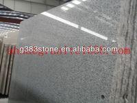 headlight special g640 stone guard