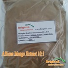 Top quality African Mango Extract10:1