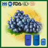 100%Pure Nutritional Grape Seed Oil by GMP Factory
