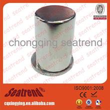 China Trade Assurance Supplier Cartoon fridge magnets 2014 new product Cylinder ndfeb magnet