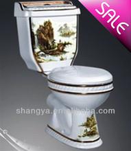 Cheap Design Ceramic Bathroom Nice Toilet washdown two piece closet with good cistem