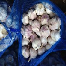 2014 New Crop China Nature Fresh Garlic, Normal white 2014 garlic