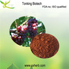 High Quality 100% Natural Organic Grape Seed Extract (High Orac Value)
