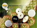 Gament de plástico complemento botones/fantasía complemento botón