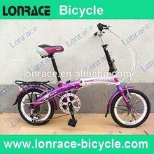 giant folding bike bicycle