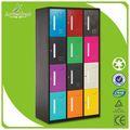 وصول جديدة متعددة الألوان arrowcrest 12 الصلب الصالة الرياضية باب خزائن الملابس