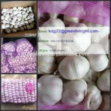 We export large quantity of fresh garlic to Malaysia