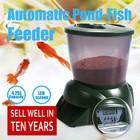aquarium tank, fish feeder, aquarium accessories
