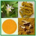 2014 Pure Natural Curcumin 95%/Tumeric Extract