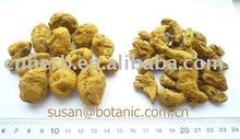 Turmeric (Curcuma longa), whole, cut, powder