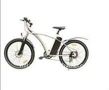 Electric bicycle (LB-L05)