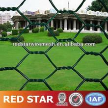 Anping Hexagonal Mesh/Hexagonal Wire Mesh(Reliable Factory)(ISO9001)