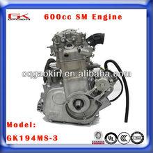 ATV & UTV 600CC Engine