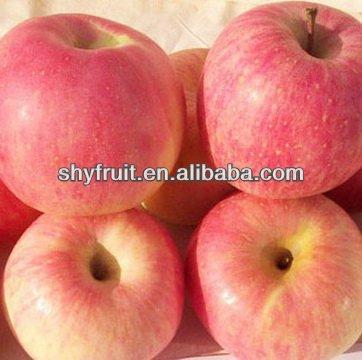 Shaanxi baishui grade one fresh fruit (HOT)