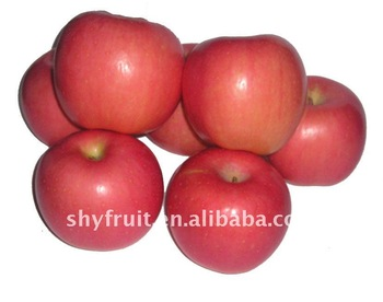 2013 Chinese fresh red Fuji apple fruit