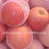 Fresh red apple fuji apple wholesale
