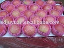 Fresh Fuji Red Apples